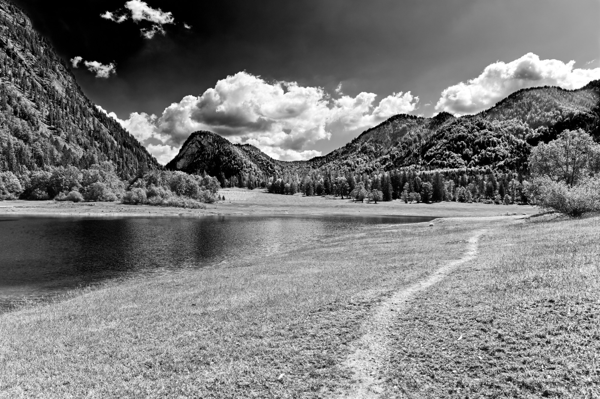 Read more about the article Schwarzweiß Bildbearbeitung in Affinity Photo